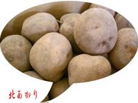 Jyagaimo01