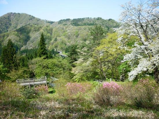 2011_05_18_042a
