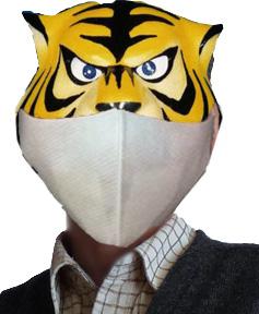 Tiger_mask